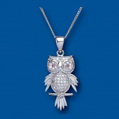 Silver Crystal Owl Pendant With Personalised Gift Case